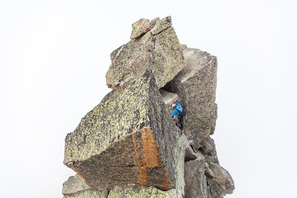 Peigne spur summit (Mont Blanc)